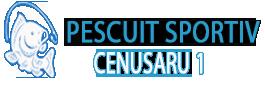 CENUSARU 1
